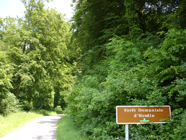The entrance to the forest of Hesdin