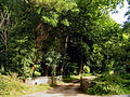 Entrance to Gatcombe Mill - geograph.org.uk - 42856.jpg