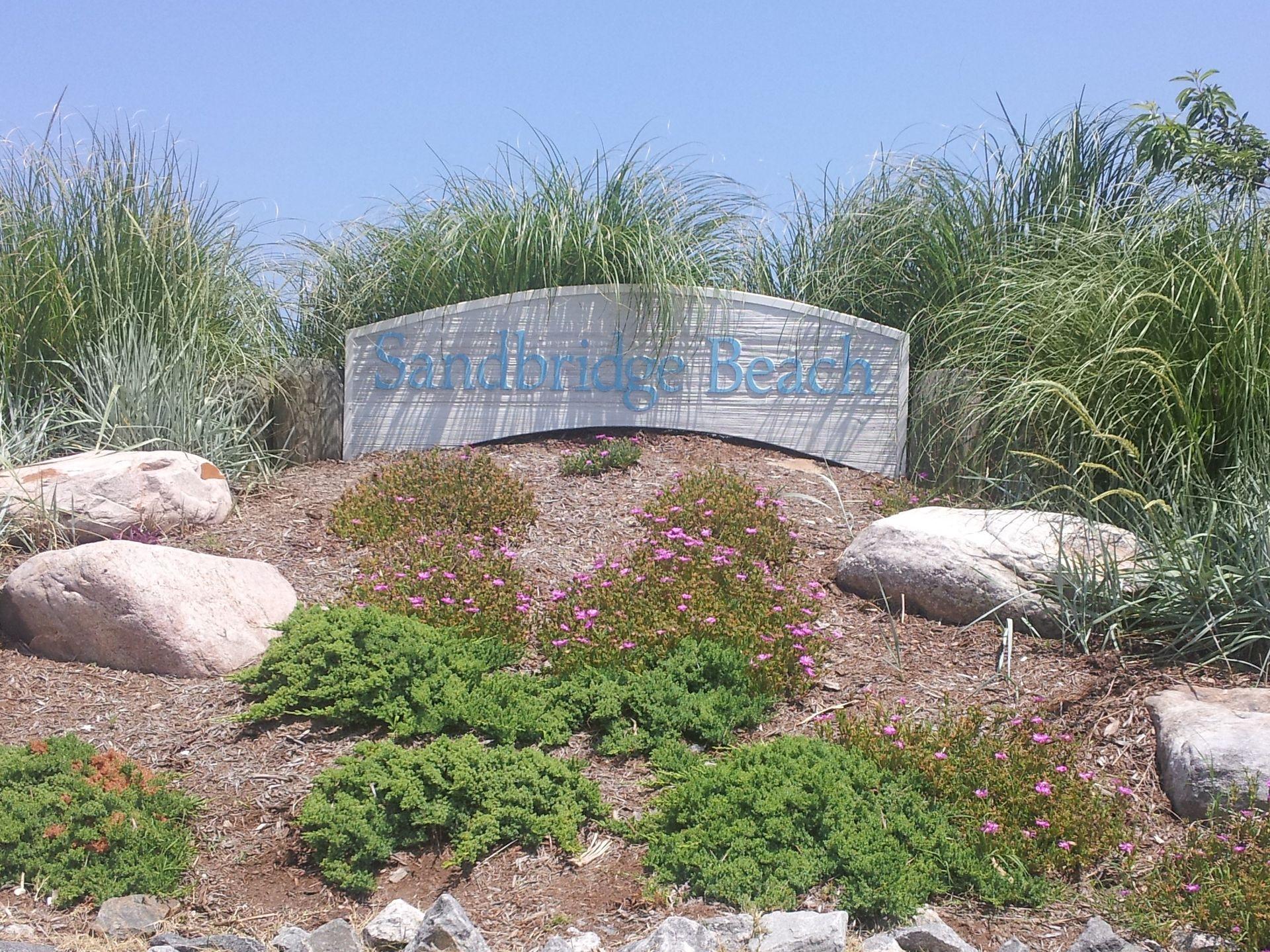 Virginia S Beach Wine Store