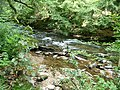 Exmoor , The River Barle - geograph.org.uk - 1496729.jpg