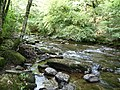 Exmoor , The River Barle and Tarr Steps Woods - geograph.org.uk - 1496863.jpg