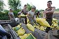FEMA - 36613 - Missouri Army National Guard sand bag operation in Missouri.jpg