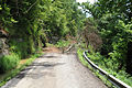 FEMA - 44789 - Damaged road in Hickman County TN.jpg