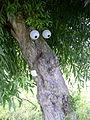 FFM Komische Kunst Struwwelpeter-Baum.jpg
