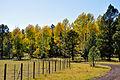 Fall colors along FR 151 (3971390831).jpg