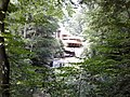 Fallingwater with Trees.jpg