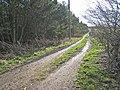 Farm road at Kimblesworth - geograph.org.uk - 351762.jpg