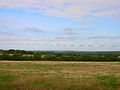 Farmland near Streat - geograph.org.uk - 57105.jpg