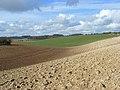 Farmland on the downs near Lambourn - geograph.org.uk - 726131.jpg