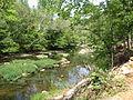Fews Ford Eno River SP NC1305 (4029764277).jpg