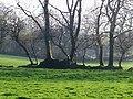 Field boundary, Llanteg - geograph.org.uk - 1291289.jpg
