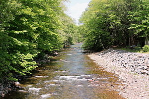 Fishing Creek (North Branch Susquehanna River) - Fishing Creek in Sugarloaf Township