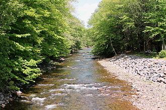 Fishing Creek (North Branch Susquehanna River tributary) - Fishing Creek in Sugarloaf Township