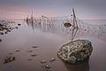 Fishing nets (8377175145).jpg