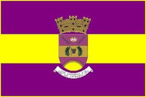 Baloncesto Superior Nacional - Image: Flag of Canovanas