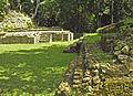 Flickr - archer10 (Dennis) - Belize-1104.jpg