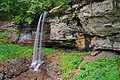 Flickr - ggallice - Lower falls, Monongahela National Forest, West Virginia.jpg
