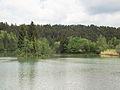 Flussaue Lech Hohenfurch Bayern.jpg