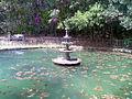 Fonte do Lago (Quedas do Rio Bonito) - panoramio.jpg