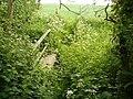 Footbridge near Wysall - geograph.org.uk - 1333503.jpg