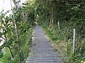 Footpath by Rookswood House - geograph.org.uk - 952696.jpg