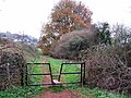 Footpath in Great Parks - geograph.org.uk - 1095844.jpg