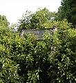 Footpath sign - geograph.org.uk - 816978.jpg
