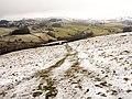 Footpath to Potter Tarn - geograph.org.uk - 1715634.jpg