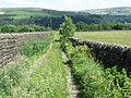 Footpath towards Hebden Wood - geograph.org.uk - 1377419.jpg