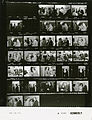 Ford A0080 NLGRF photo contact sheet (1974-08-12)(Gerald Ford Library).jpg