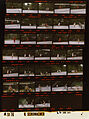 Ford A5170 NLGRF photo contact sheet (1975-06-22)(Gerald Ford Library).jpg