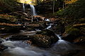 Forest-waterfalls-fall-foliage-falls-of-hills-creek-rocks - West Virginia - ForestWander.jpg
