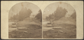 Fort William Henry Hotel, from Robert N. Dennis collection of stereoscopic views.png