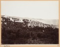 Fotografi från San Remo - Hallwylska museet - 104504.tif