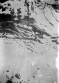 Fremder Flieger, gelandet in Sils - CH-BAR - 3239732.tif
