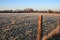 Frosty Field by Wenman Road - geograph.org.uk - 1146596.jpg