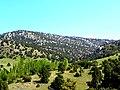 Göl boğazı - panoramio (3).jpg