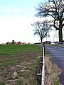 Galley Law Farm, Fishburn, County Durham - geograph.org.uk - 150216.jpg