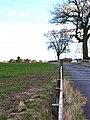 Galley Law Farm, Fishburn, County Durham - geograph.org.uk - 150216.jpg