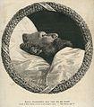 Gambetta, Léon (1838-1882) CIPB1253.jpg