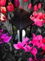 Garden Lantern.png