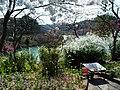 Garden of the flowers 花庭 - panoramio.jpg
