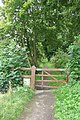 Gate to the path - geograph.org.uk - 959410.jpg