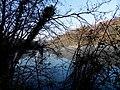 Geneve, Promenade le long du Rhone - panoramio (24).jpg