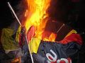 German flag burning 9.jpg