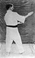 Gichin Funakoshi - Heian Nidan (15).png