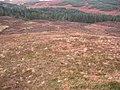 Glen Suardal - geograph.org.uk - 652635.jpg