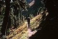 Goat Rocks Wilderness, Gifford Pinchot National Forest (36172754422).jpg