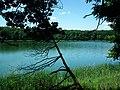 Goreckie Lake (2016).jpg