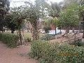 Govt, High School Chak 2-1-L okara - panoramio (1).jpg